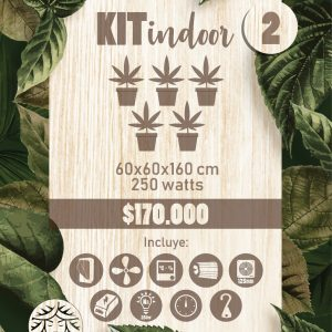 Kit Indoor 60x60x160