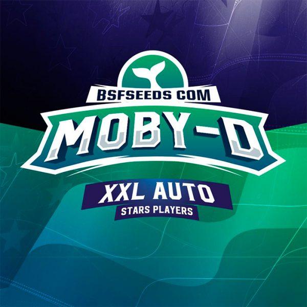 Auto Moby D XXL BSF - (x2)