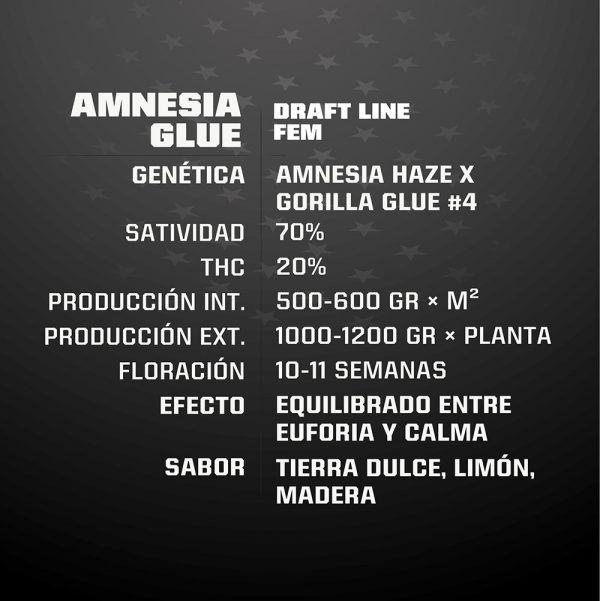 Amnesia Glue Feminizada BSF - (x4)