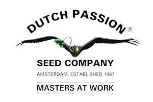 Dutch-passion-banco