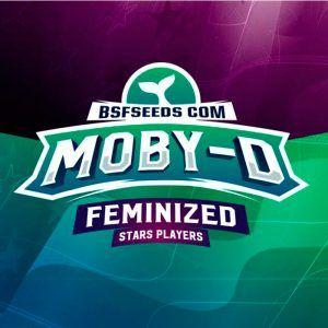 Moby D Feminizada BSF – (x2)