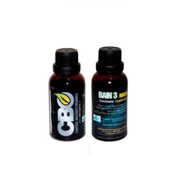 Bain 3 (conchuelas y escamas)