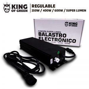 Ballast electrónico regulable 600 (king of green)