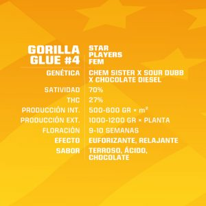 Gorilla Glue Feminizada Bsf - (x2)