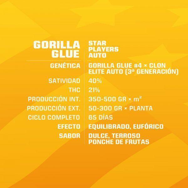 GORILLA GLUE AUTO (X7) - BSF SEEDS