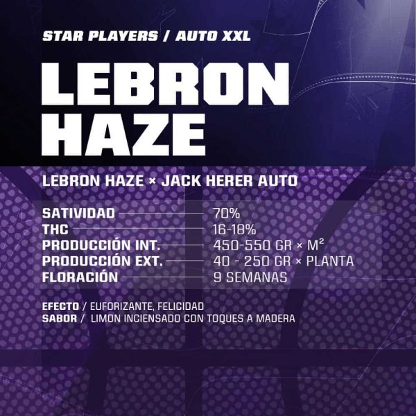 Auto Lebron Haze BSF - (x4)