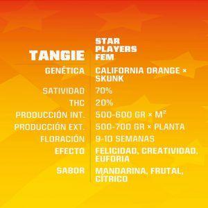 Tangie Feminizada BSF – (x4)